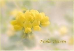Frohe Ostern Postkarten